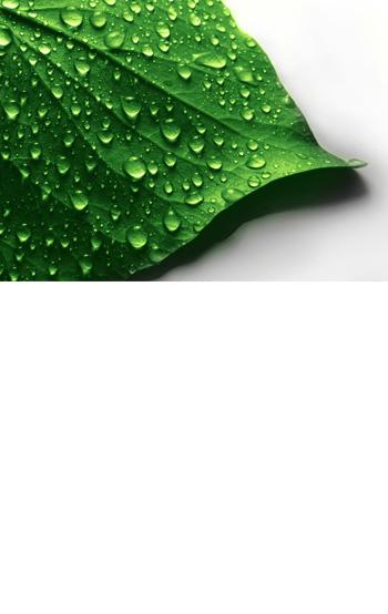 licenciamento ambiental-post